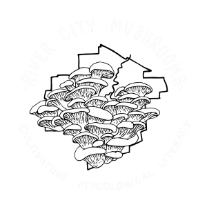 River City Mushrooms
